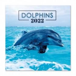Calendario 2022 30X30 Dolphins