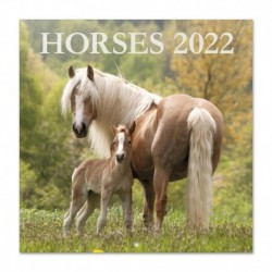 Calendario 2022 30X30 Caballos