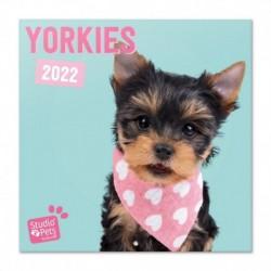 Calendario 2022 30X30 Studio Pets Yorkie