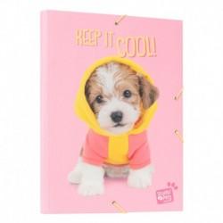 Carpeta Solapas Studio Pets Dog Lovely Puppies