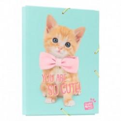 Carpeta Solapas Studio Pets Cat Lovely Kittens