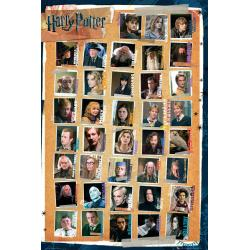 Maxi Poster Harry Potter 7 Characters