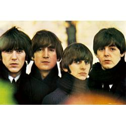 Maxi Poster The Beatles For Sales