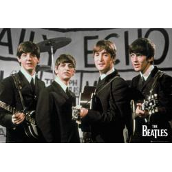 Maxi Poster The Beatles Daily Echo