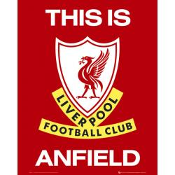 Mini poster Liverpool This is Anfield