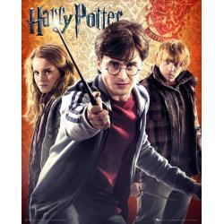 Mini poster Harry Potter 7 Trio