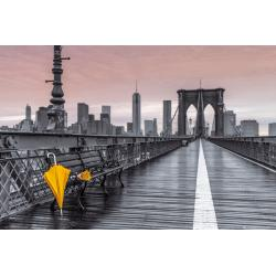 Maxi Poster Assaf Frank Brooklyn Bridge Umbrella