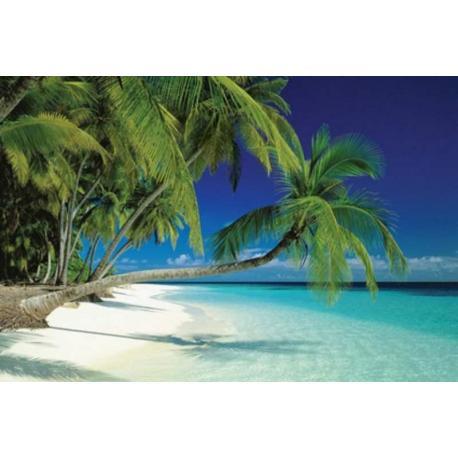 Poster Playa de las Maldivas
