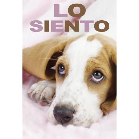 Tarjeta Felicitacion Lo Siento