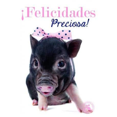 Tarjeta Felicitacion ¡Felicidades Preciosa!