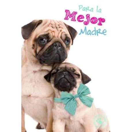 Tarjeta Felicitacion Para La Mejor Madre