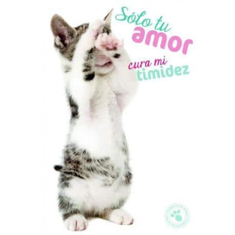 Tarjeta Felicitacion Solo Tu Amor Cura Mi Timidez