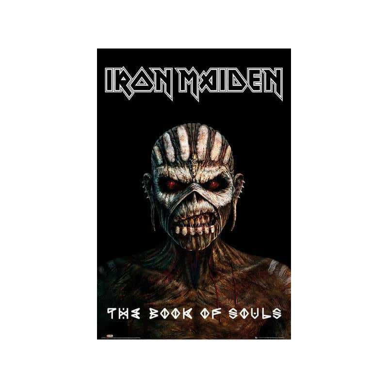 ironmaiden book for people review