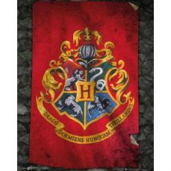 Mini poster Harry Potter bandera de Hogwarts
