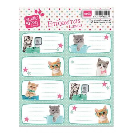 Etiqueta Escolar Grande Studio Pets Gatos