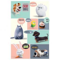 Poster La Vida Secreta de las Mascotas