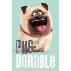Poster La Vida Secreta de las Mascotas Adorable