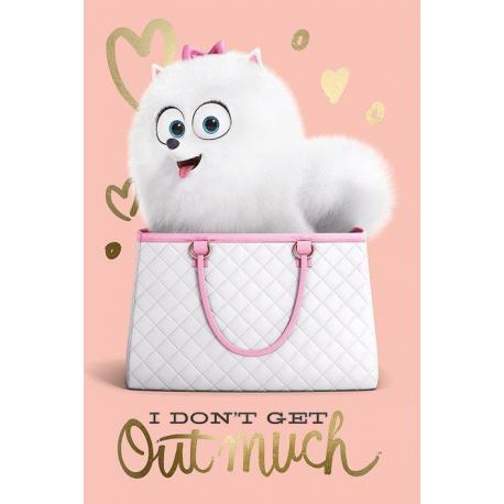 Poster La Vida Secreta de las Mascotas - No salgo mucho