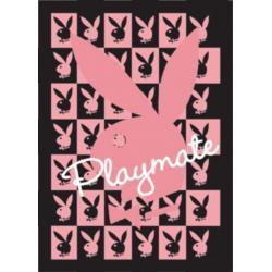 Poster 3D Playboy