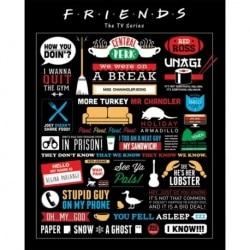 Mini Poster Friends Infografia