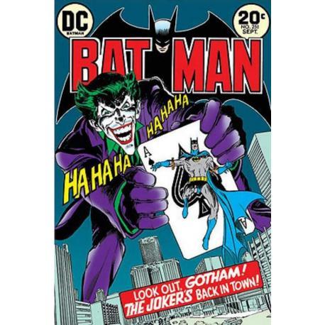 Poster Batman y Joker Esta En La Ciudad