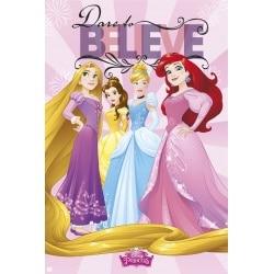 Poster Princesas de Disney