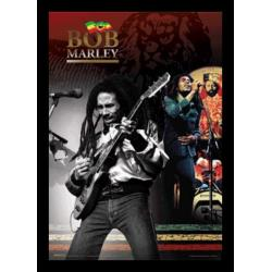 Poster 3D Enmarcado Bob Marley