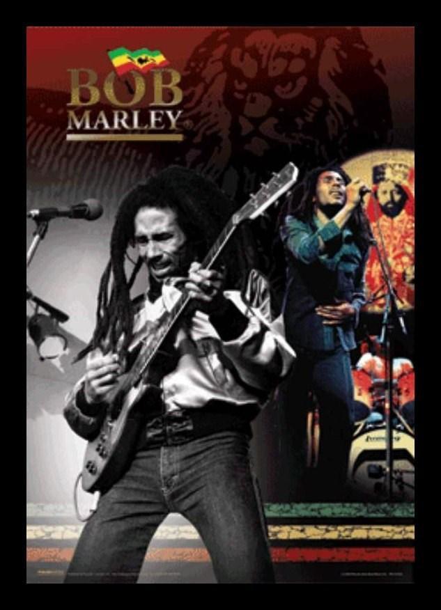 El Poster 3D Enmarcado Bob Marley de mejor calidad y precio en ...
